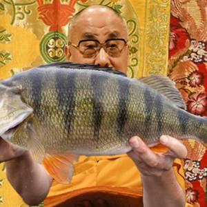 Dalaiabarscha